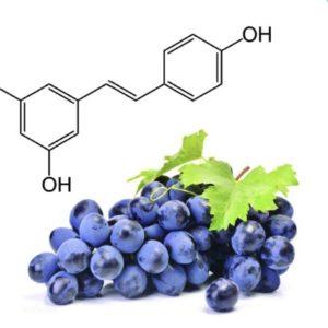 Resveratrol naturel